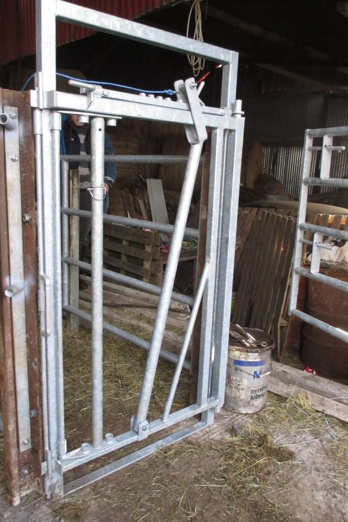 Cattle Crushes at BoSteel